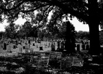 Congressional Cemetery in Southeast D.C. Photo by Flickr user NCinDC.