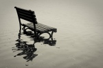 A bench on the Tidal Basin when it flooded in spring 2010. Photo by Flickr user Flashy Soup Can.